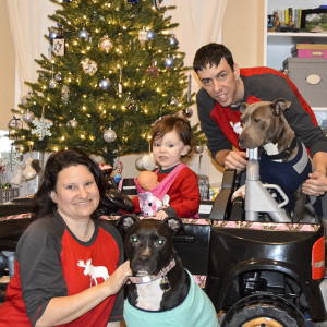 Dogs are deserving rescue grant coordinator